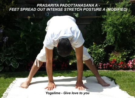 Prasarita Padotttansasana A at yogalime